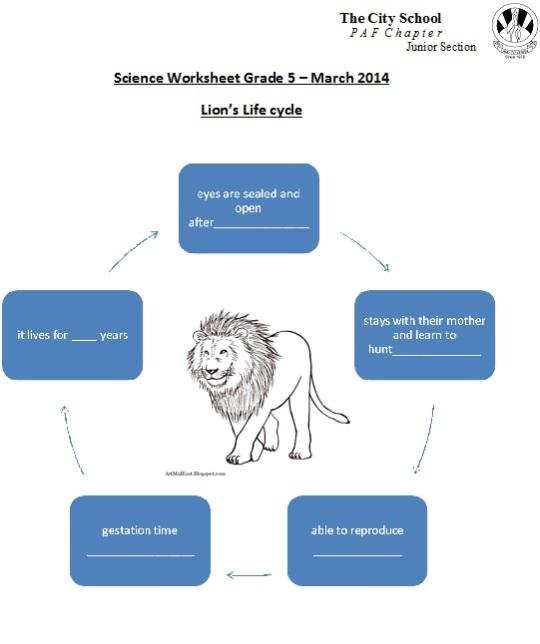 Science revision worksheet jr v 2 paf juniors science revision worksheet jr v 2 ibookread Read Online