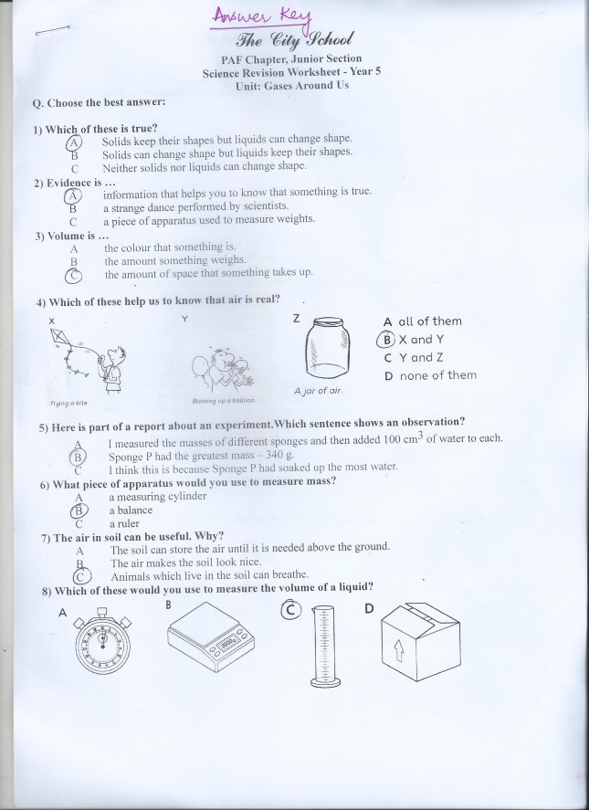 Class 5 home work worksheets paf juniors science blog worksheet year 5 ibookread Read Online